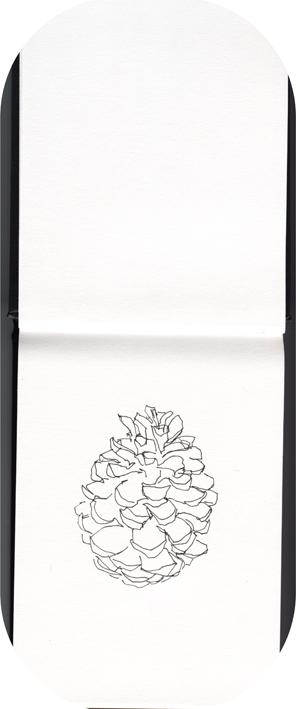 Livre dessin Essai Dalbe